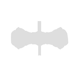 SSP Modernista